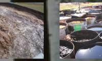 Augas residuais e residuos industriais
