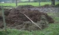 Restos e residuos gandeiros