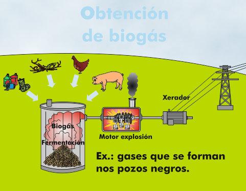 Proceso de obtención de biogás para producción eléctrica